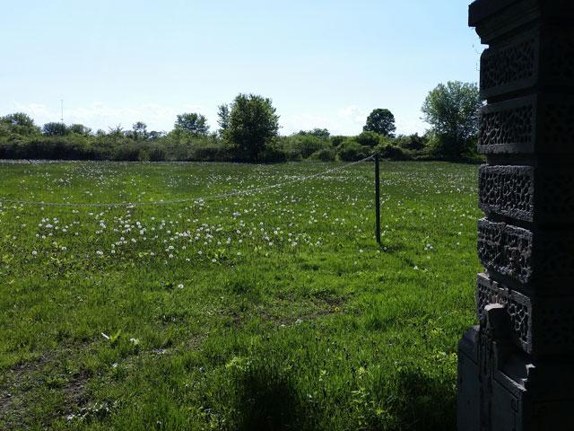 Winnebago asylum cemetery on Oshkosh