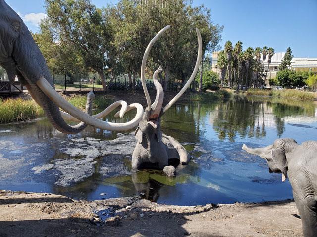 Mammoth statues at La Brea Tar Pits