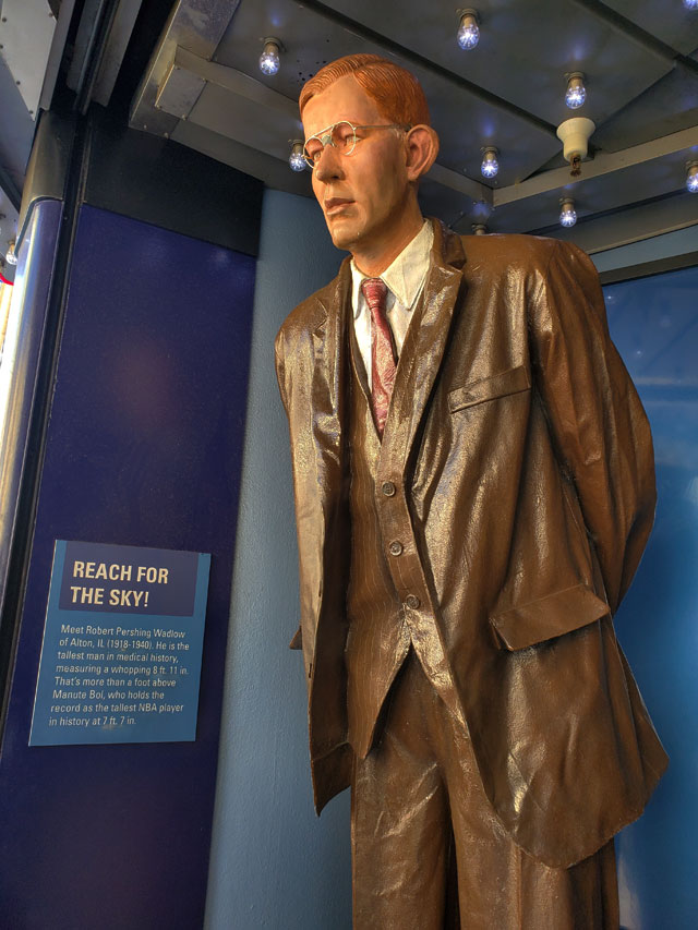 Statue of Robert Wadlow at Guinness World Records Museum in Hollywood