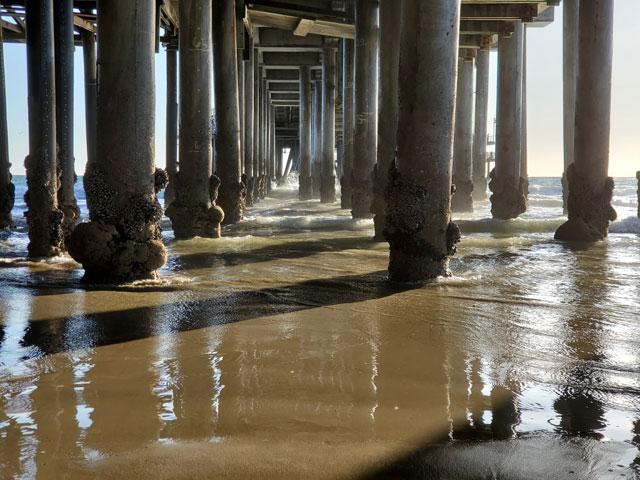 Beneath the Santa Monica pier