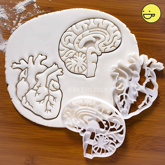 Anatomical heart and brain cookie cutters by Bakerlogy