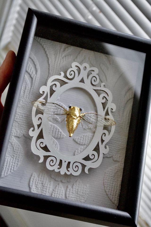 Framed gold cicada