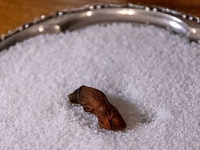 Mummified human toe used in the Sourtoe Cocktail