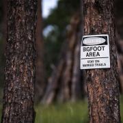 Bigfoot evidence found in Utah