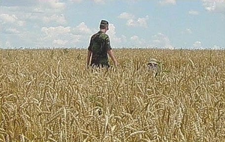 US Air Force investigates the Mayville crop circles on July 24, 2003