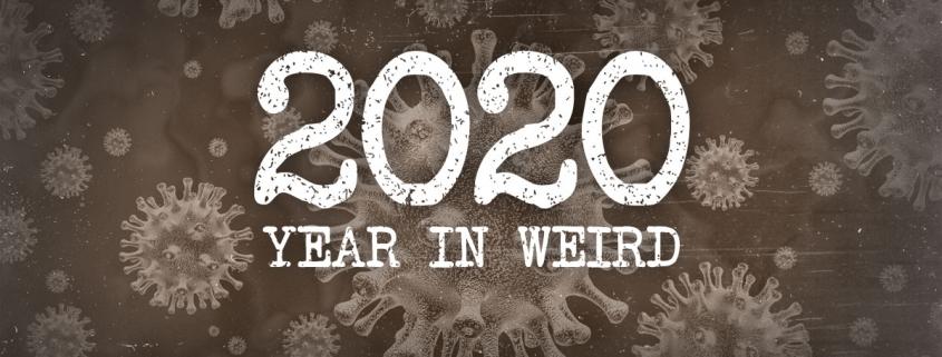 2020 in review weird news
