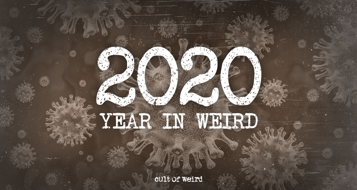 2020 in review weird news