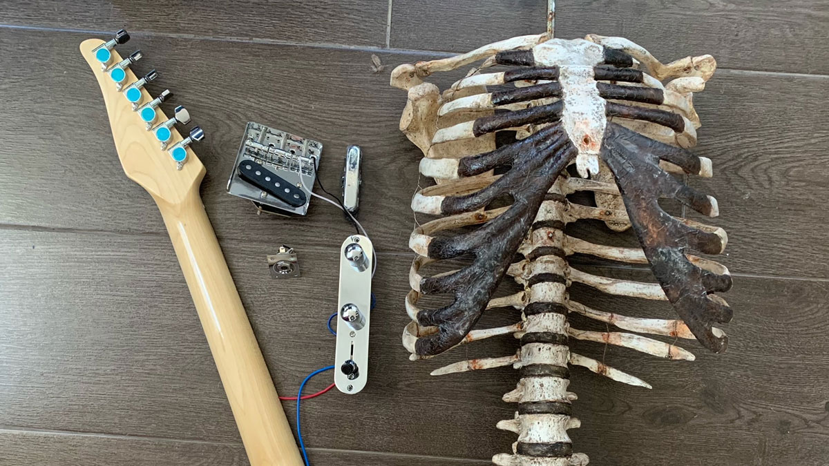 Human skeleton guitar