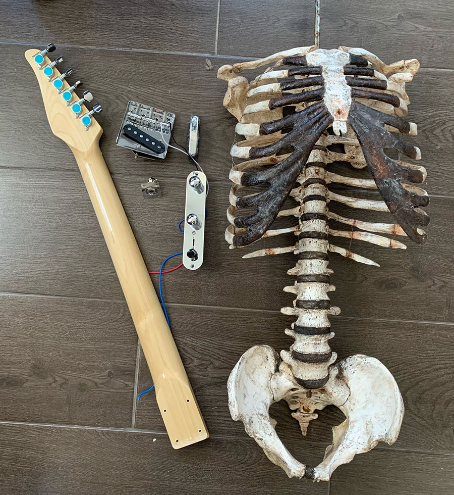Real human skeleton guitar
