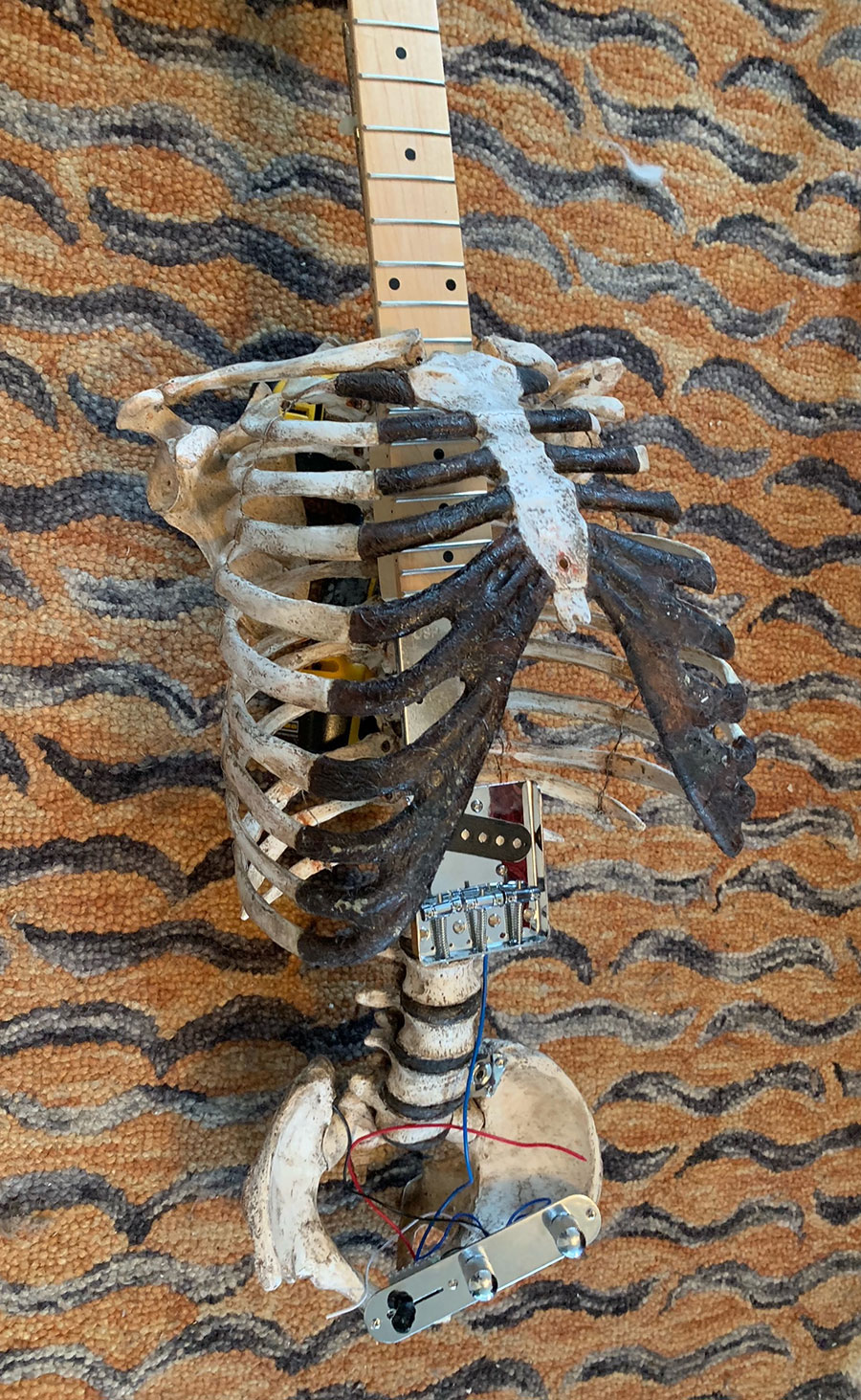 Human skeleton guitar made from real bones